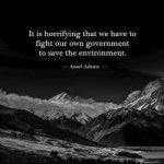 'It is horrifying that we have to fight our own government to save the environment.' - Ansel Adams