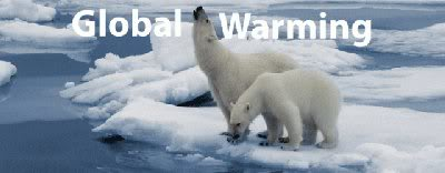 Two polar bears on fragmented ice floes - symbolic of global warming