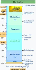 Life timeline, 4.5 billion years ago to now