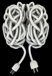 Electric flex in the shape of a brain