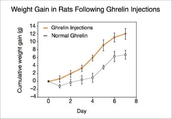Graph showing weight gain in rats following ghrelin injections