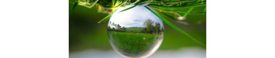Countryside landscape as seen through a crystal ball